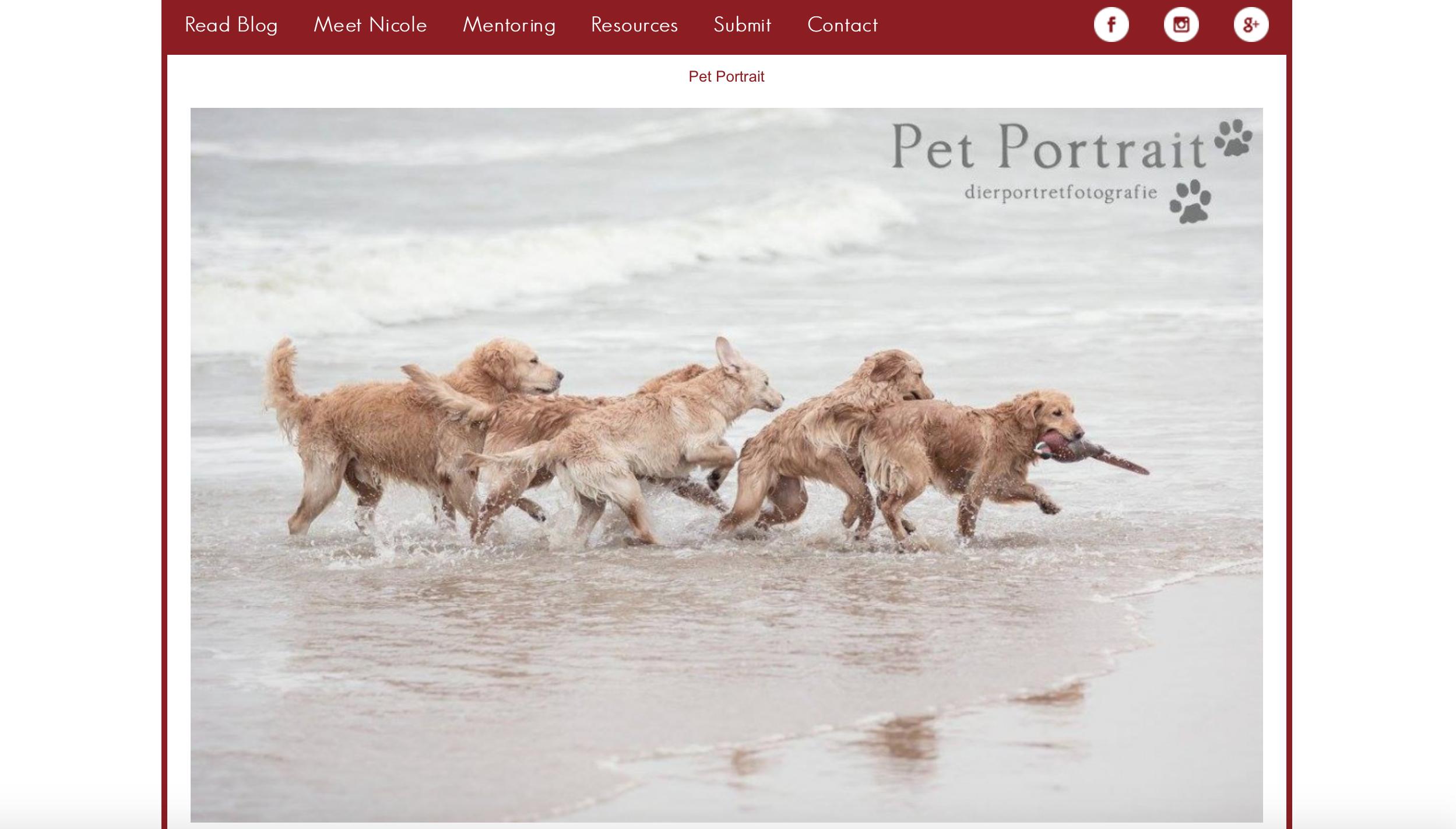 Publicatie op de Hair of the Dog website, bij de Top 10 van november