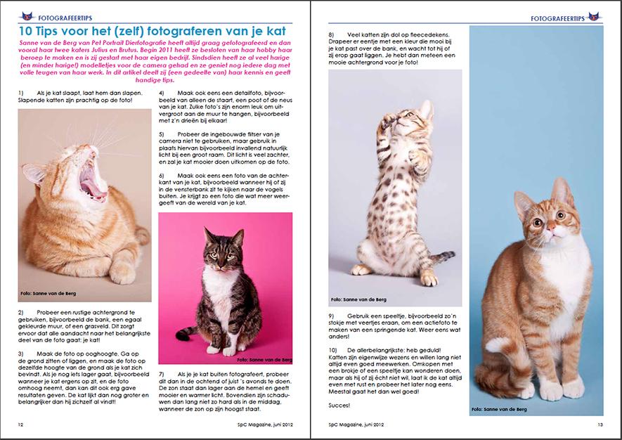 publicatie Saint Pro Cat Magazine