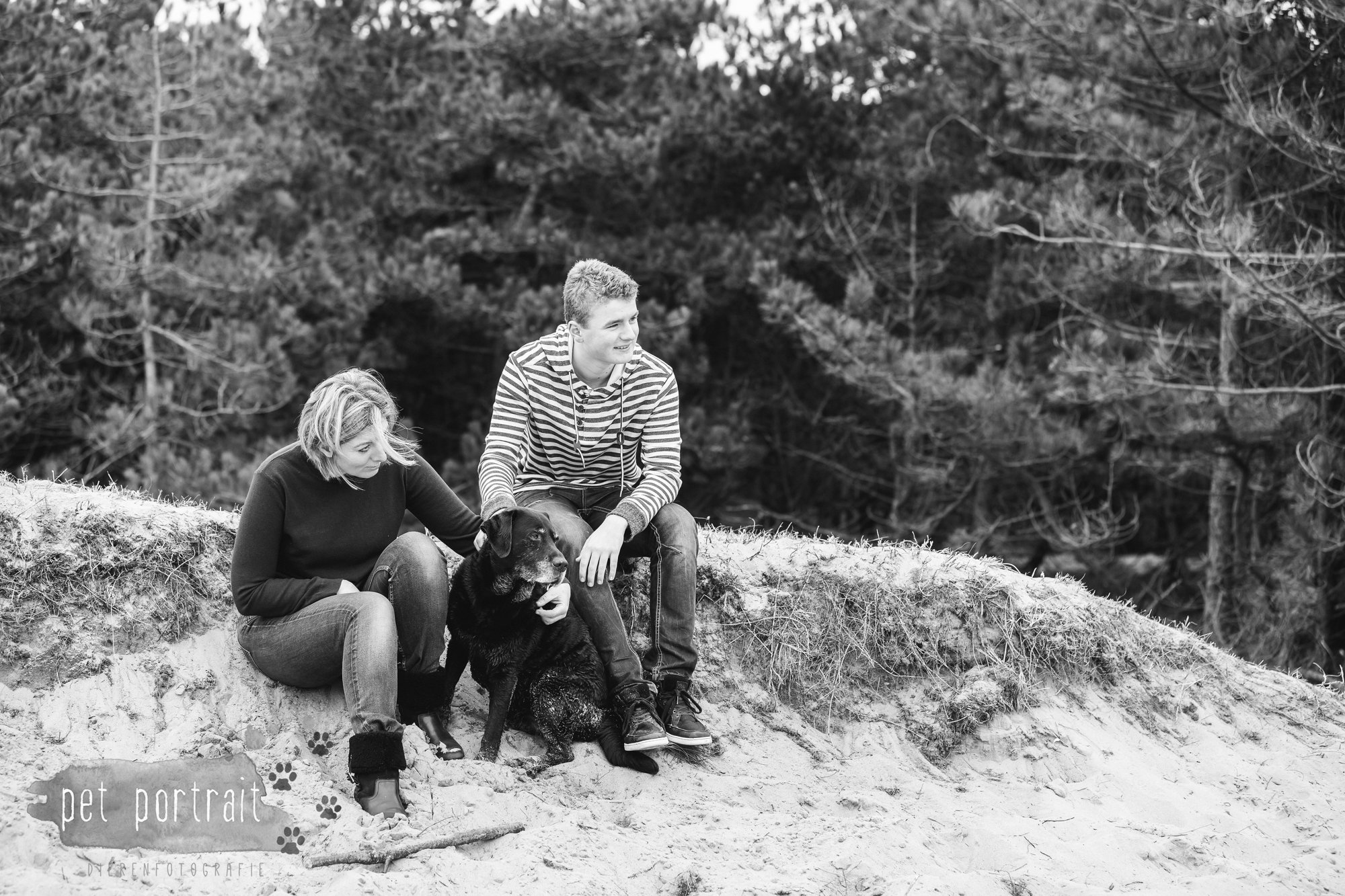 Hondenfotograaf Wassenaar - Labrador Apple-9