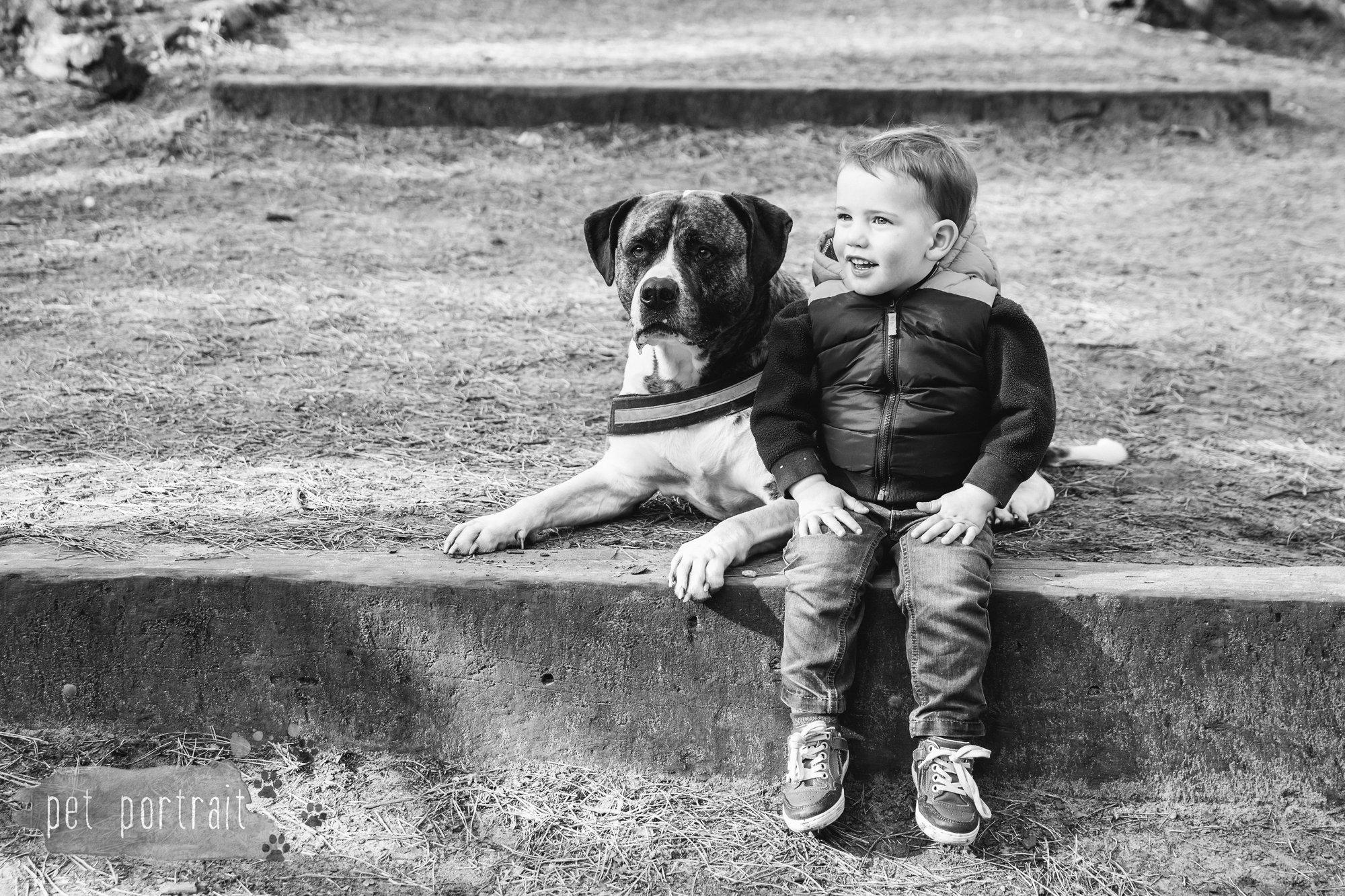 Hondenfotograaf Heemstede - Dier en Baasje fotoshoot in het bos-2