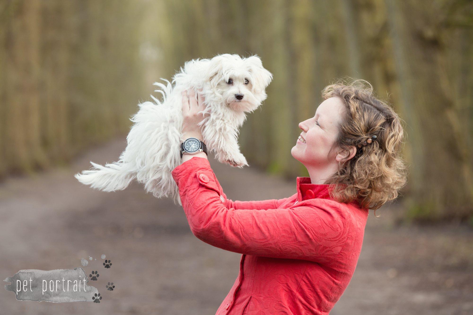 Hondenfotograaf Heemstede - Maltezer pup-12