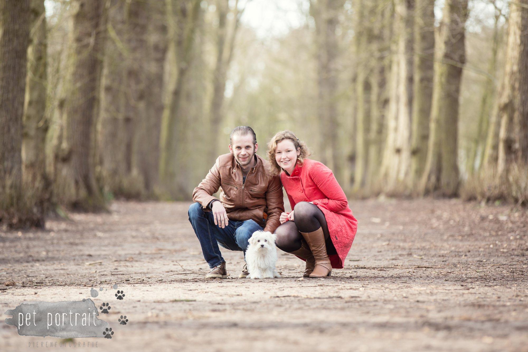 Hondenfotograaf Heemstede - Maltezer pup-3