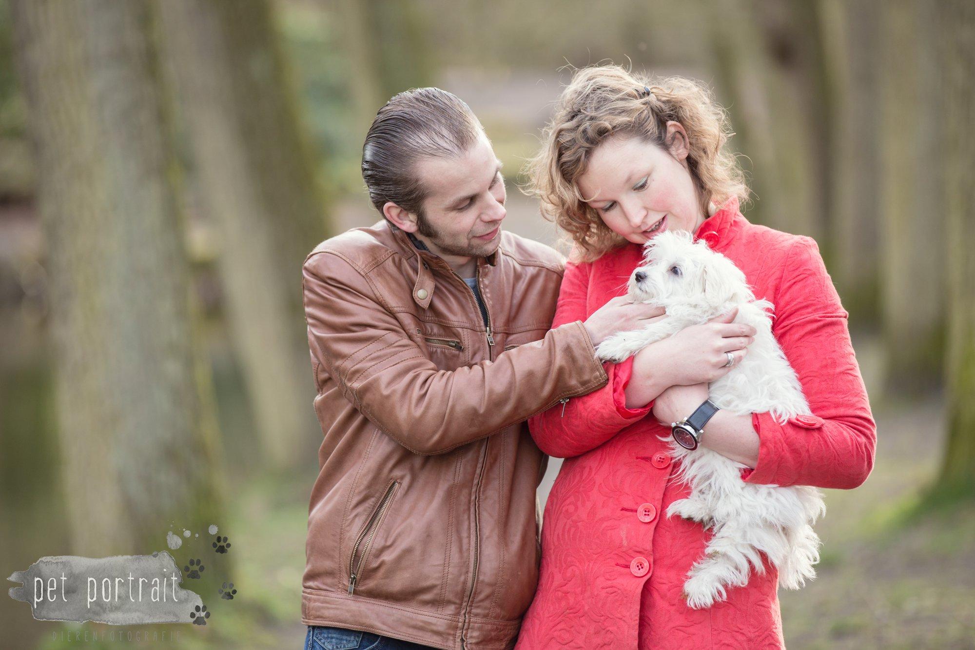 Hondenfotograaf Heemstede - Maltezer pup-6