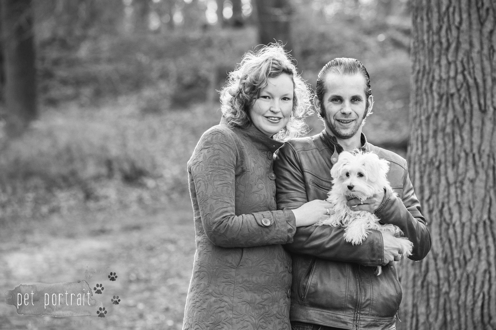 Hondenfotograaf Heemstede - Maltezer pup-7