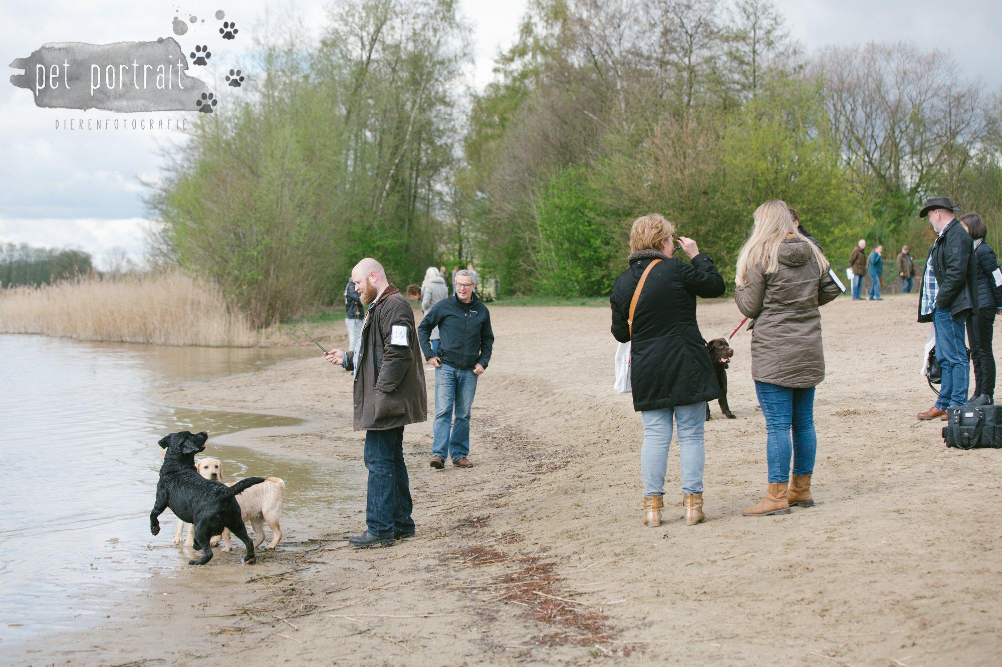 Hondenfotograaf Pet Portrait - Clubdag LKN - Waterpret met het nestje van Juno-10