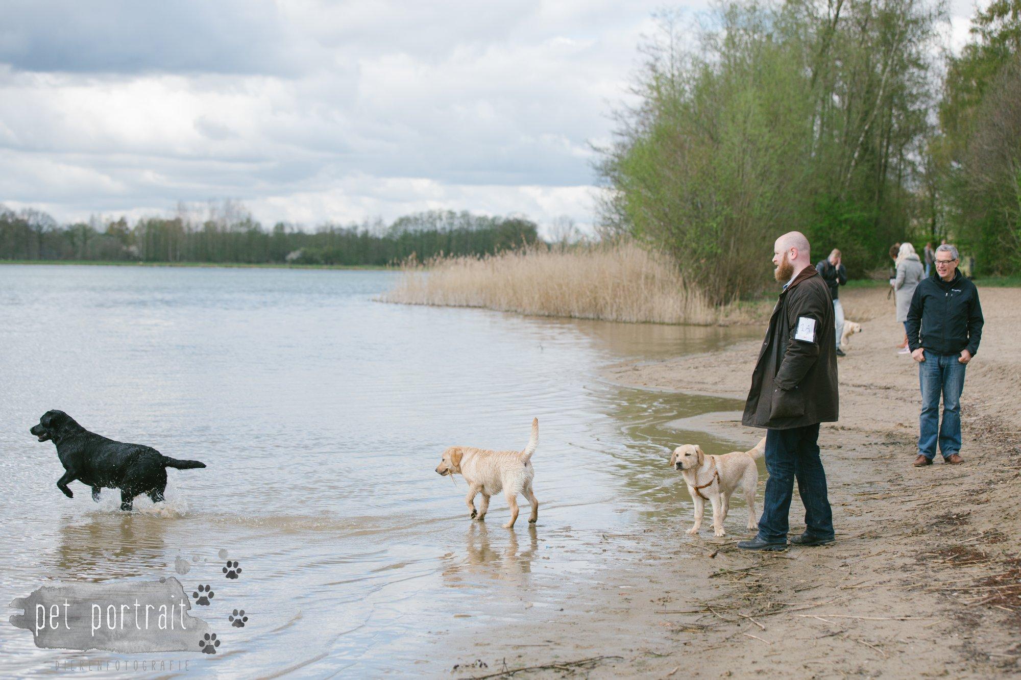 Hondenfotograaf Pet Portrait - Clubdag LKN - Waterpret met het nestje van Juno-11