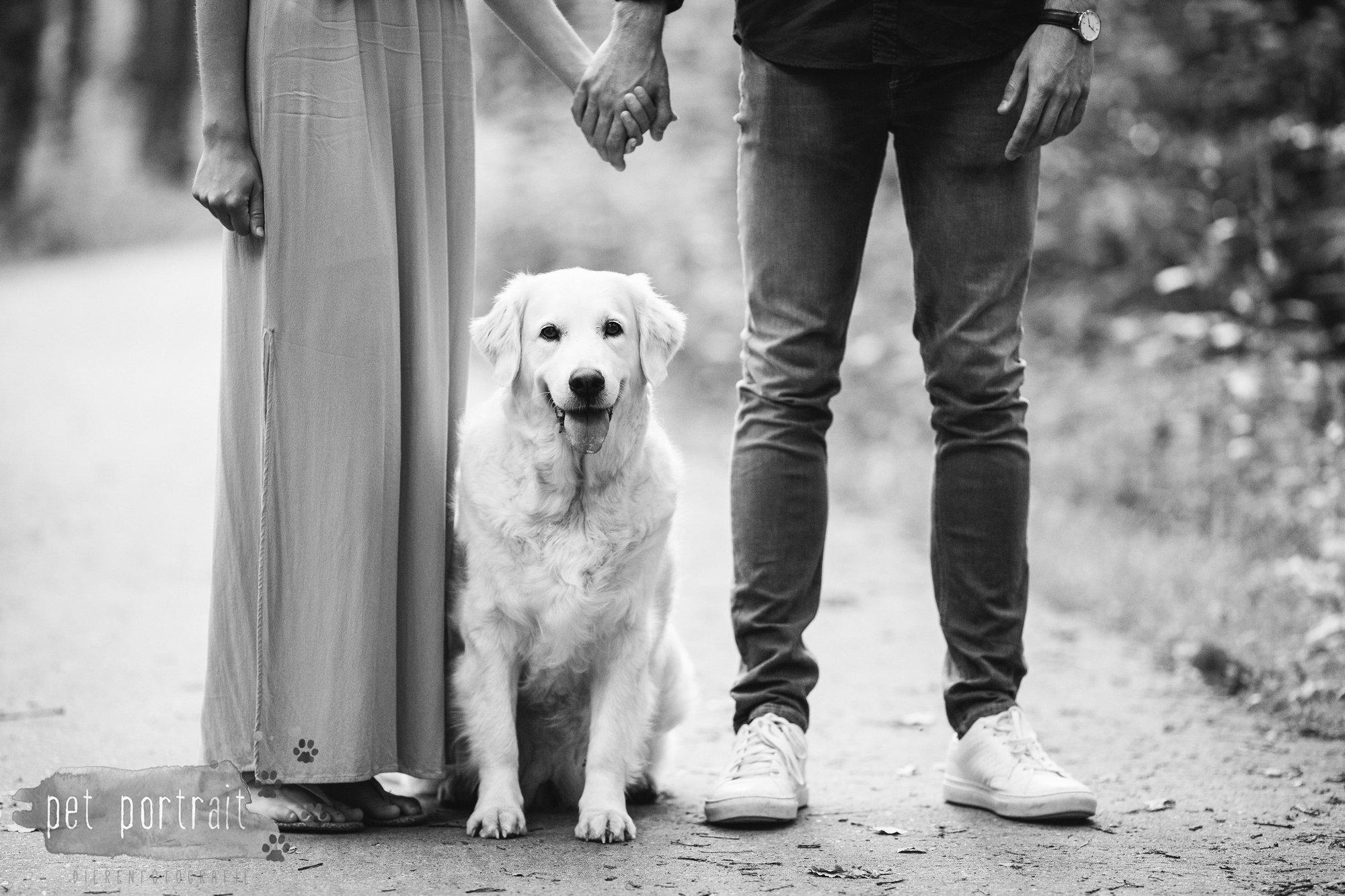 Hondenfotograaf Soest - Dier en Baasje fotoshoot in de Soesterduinen-14