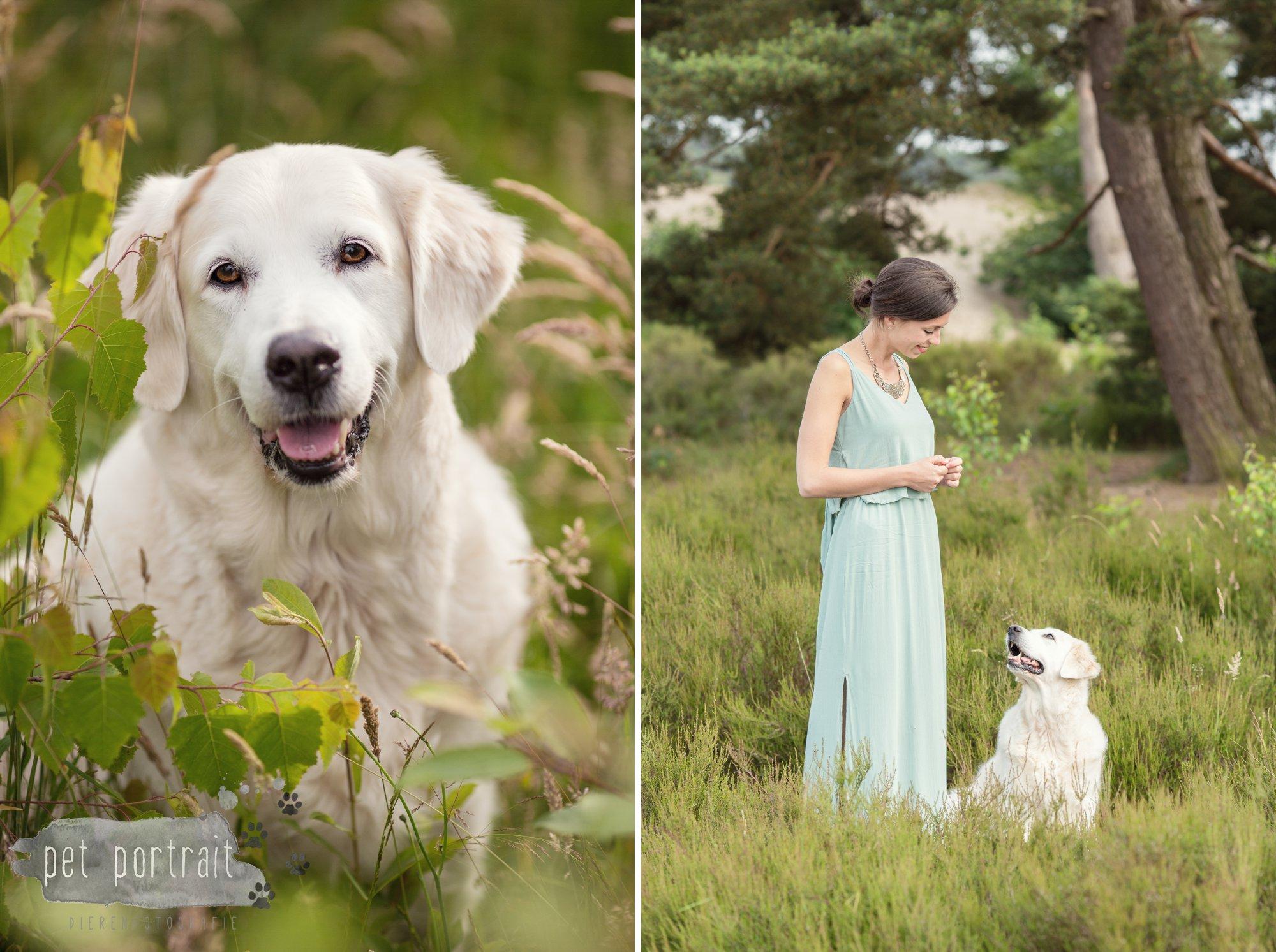 Hondenfotograaf Soest - Dier en Baasje fotoshoot in de Soesterduinen-3