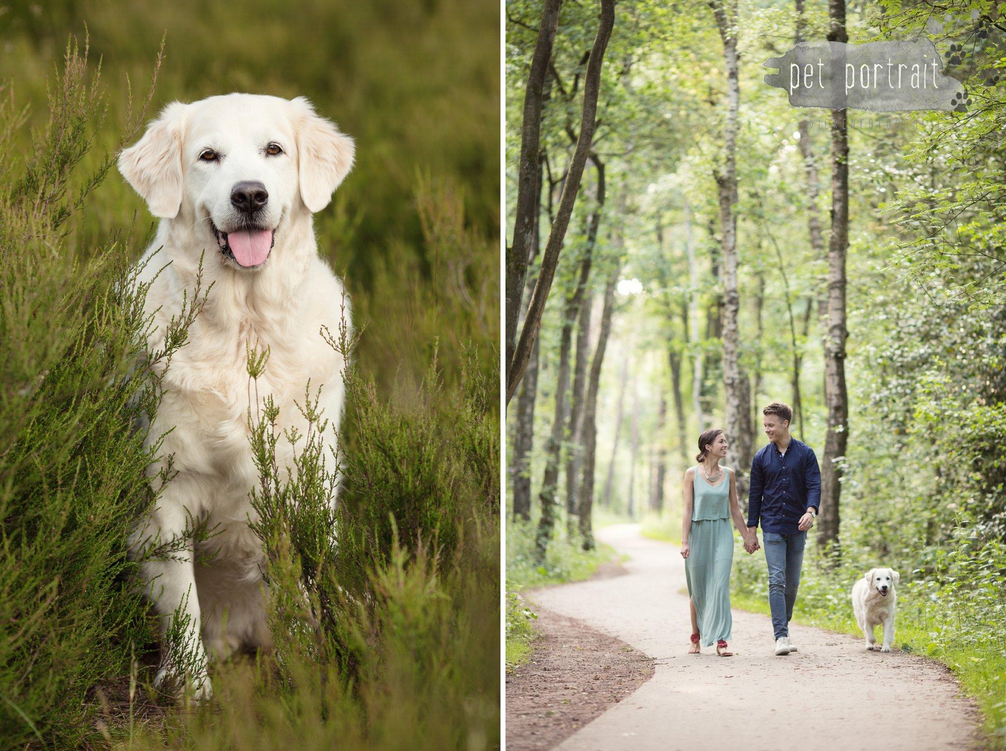 Hondenfotograaf Soest - Dier en Baasje fotoshoot in de Soesterduinen-6
