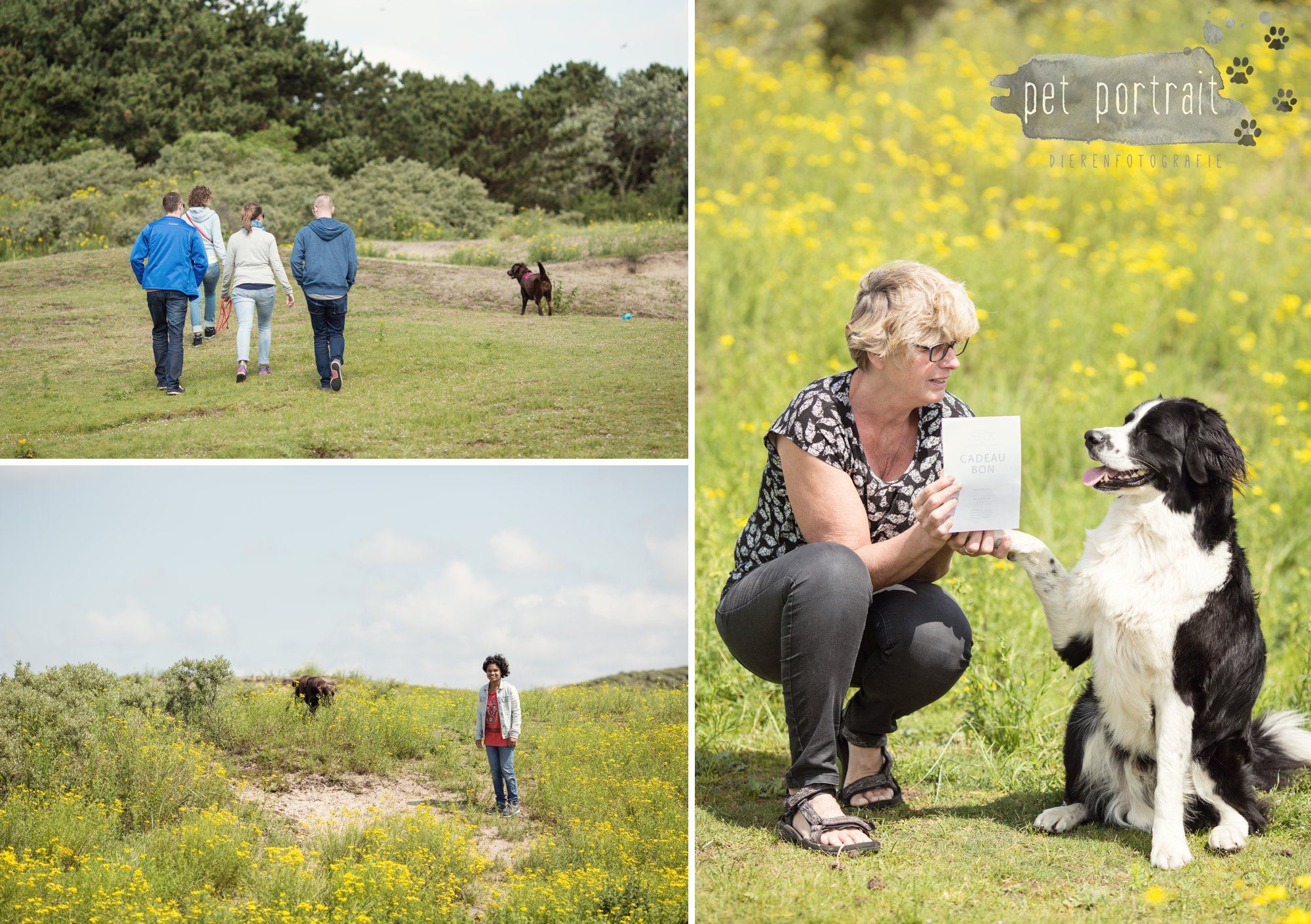 Doggy Treasure Hunt - Pet Portrait Dierenfotografie - Behind the Scenes-6