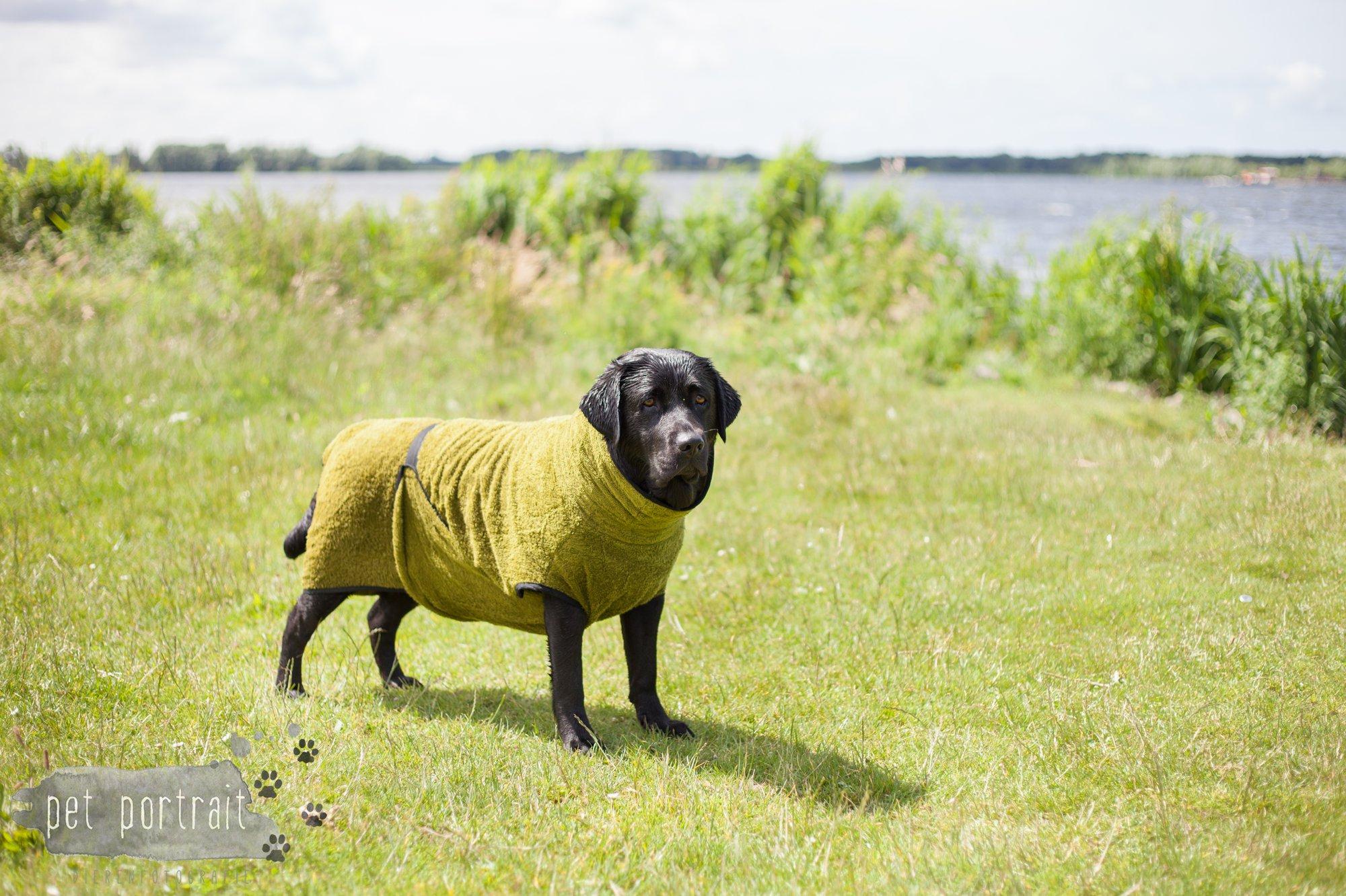 DogStore Handgemaakte hondenartikelen - badjassen-2