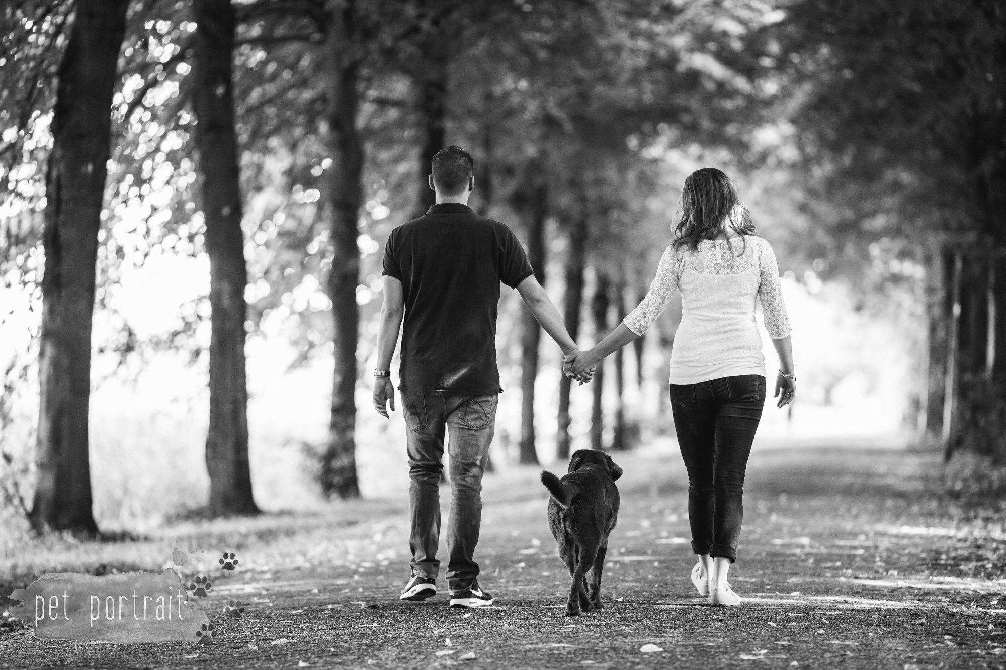Hondenfotograaf Lelystad - Beloved Dier en Baasje fotoshoot-1