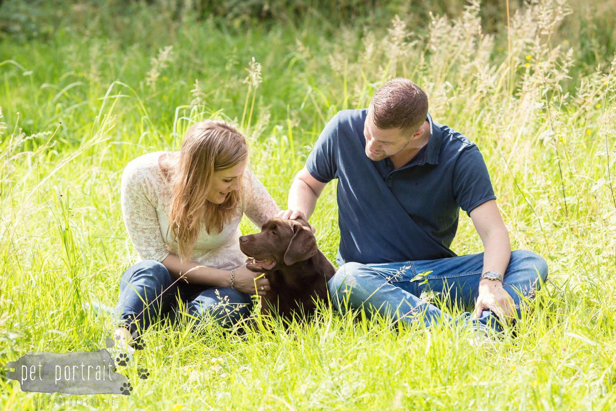 Hondenfotograaf Lelystad - Beloved Dier en Baasje fotoshoot-10