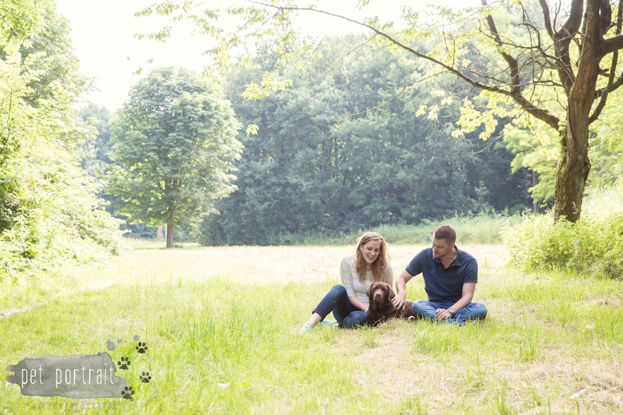Hondenfotograaf Lelystad - Beloved Dier en Baasje fotoshoot-3