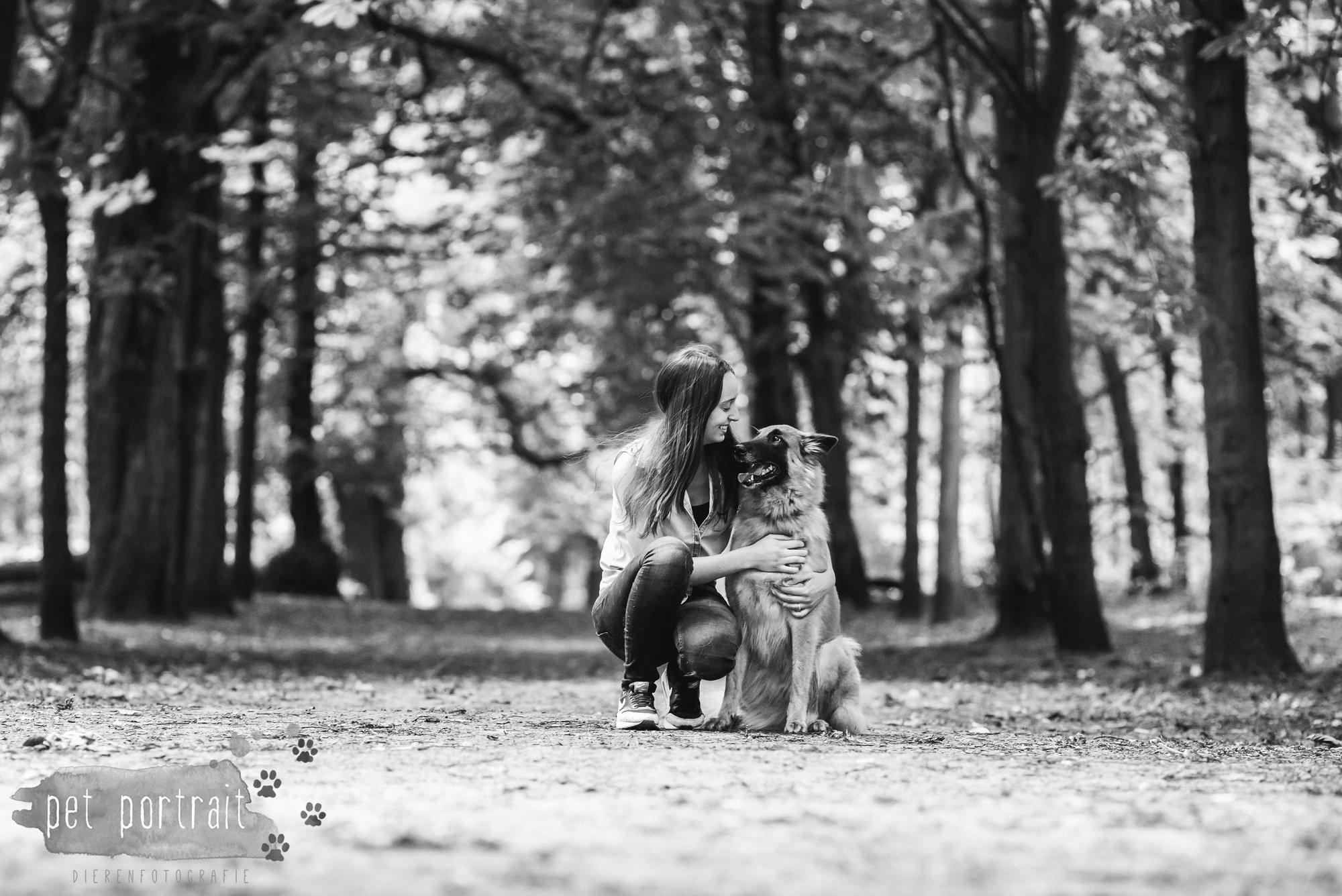 Hondenfotograaf Heemstede - Hollandse Herder en Tervuerense Herder-12