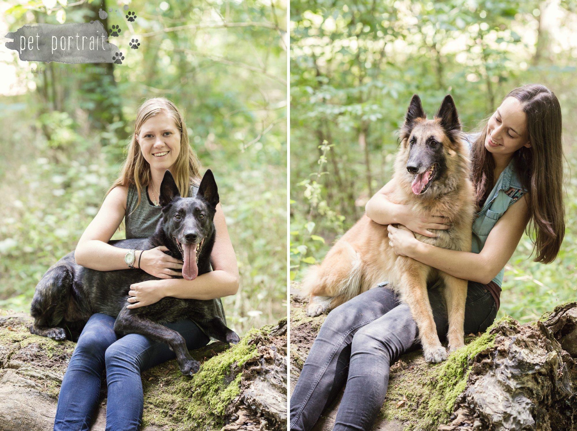 Hondenfotograaf Heemstede - Hollandse Herder en Tervuerense Herder-15