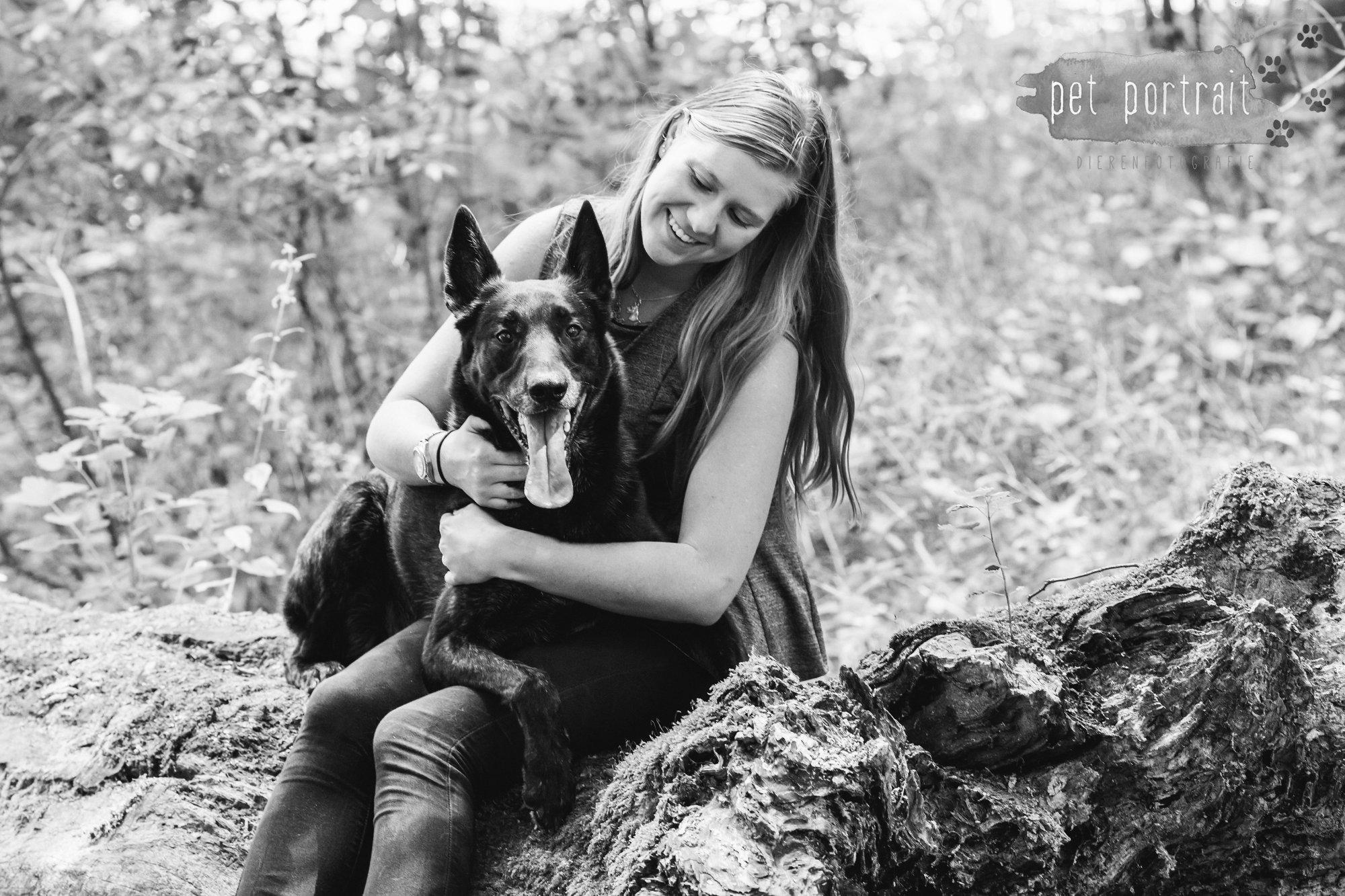 Hondenfotograaf Heemstede - Hollandse Herder en Tervuerense Herder-16