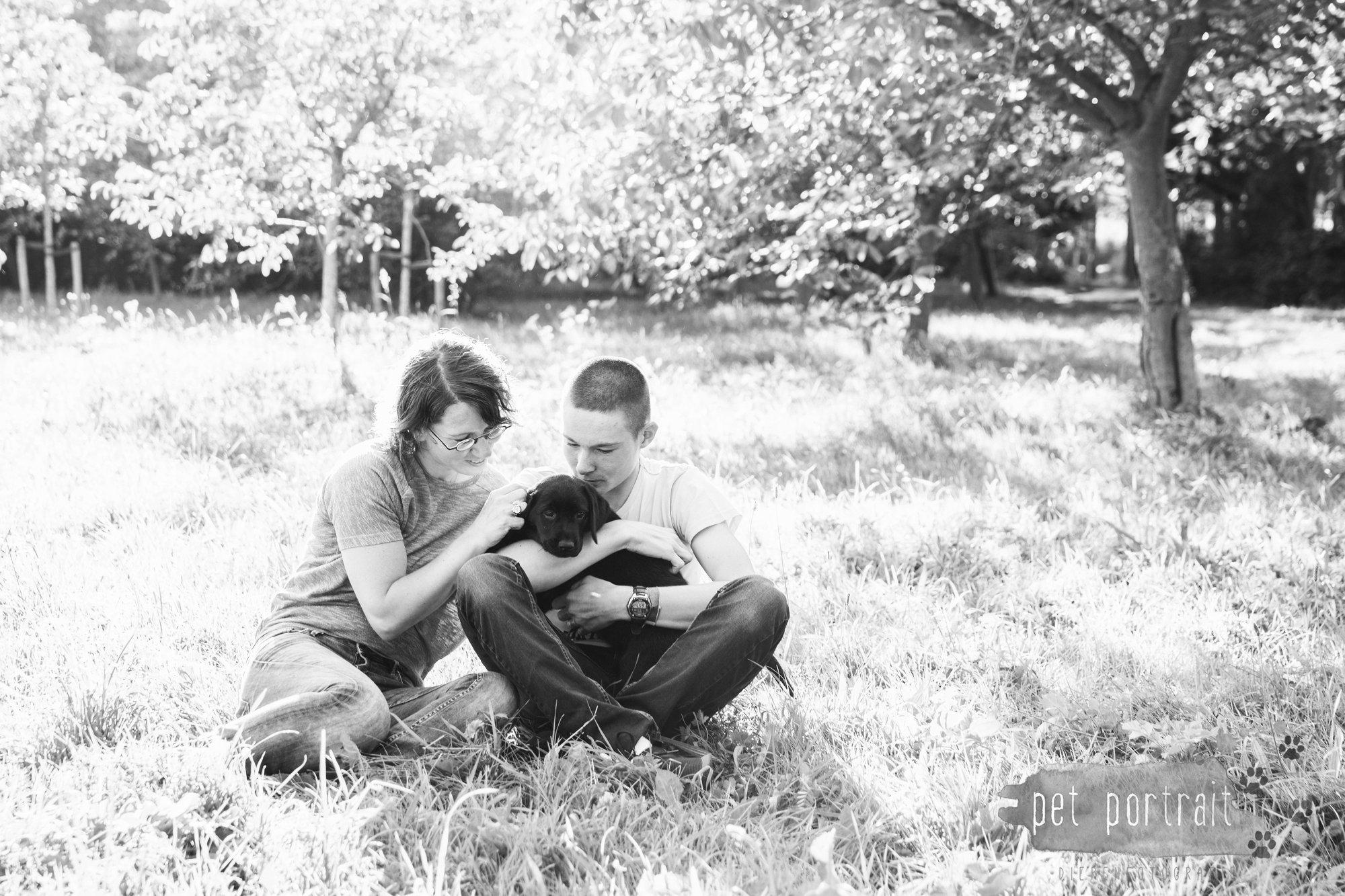 hondenfotograaf-den-haag-labrador-pup-in-het-park-1