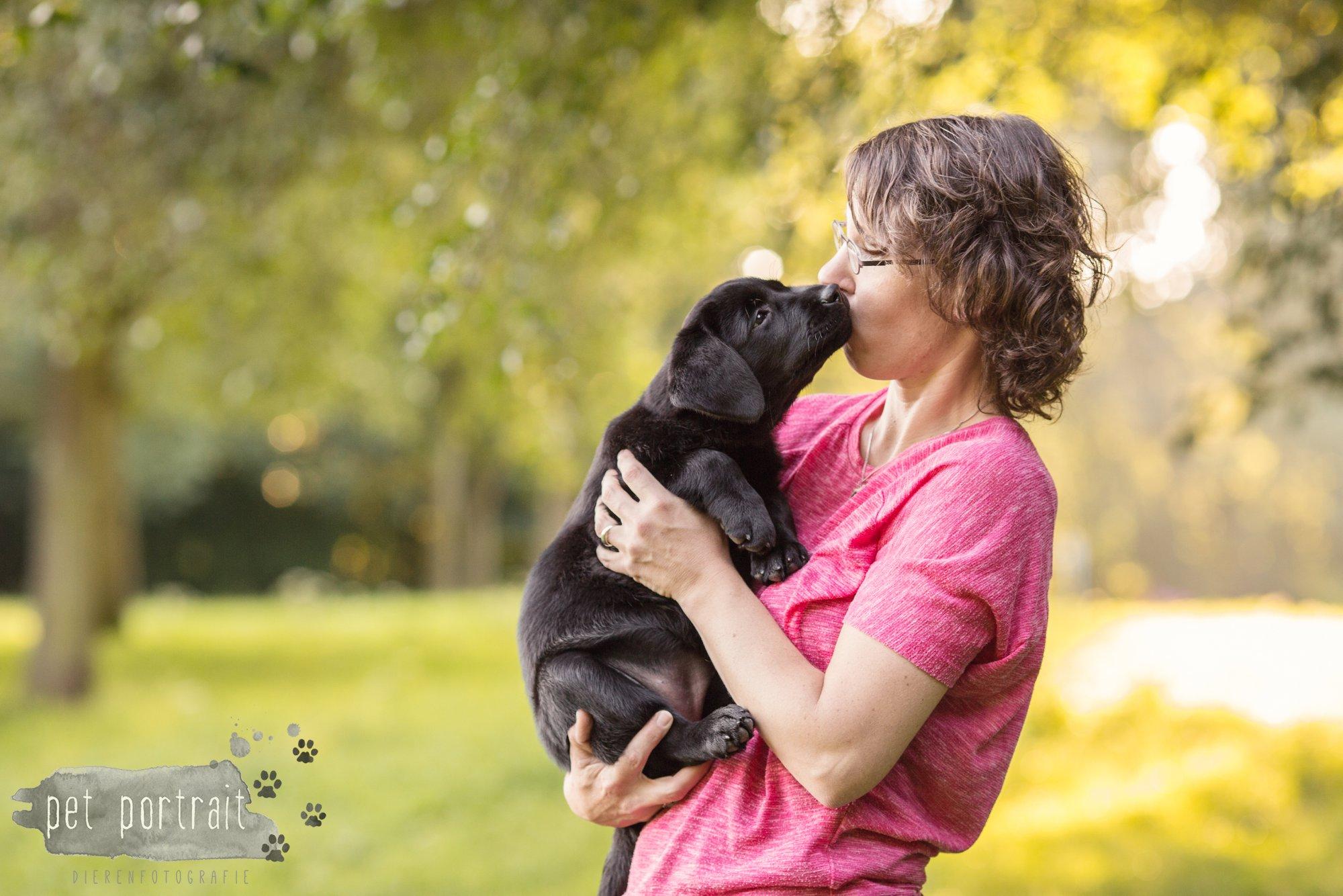 hondenfotograaf-den-haag-labrador-pup-in-het-park-5