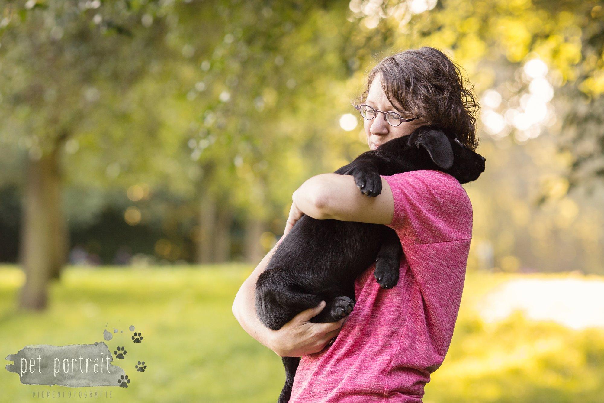 Hondenfotograaf Den Haag - Labrador pup in het park