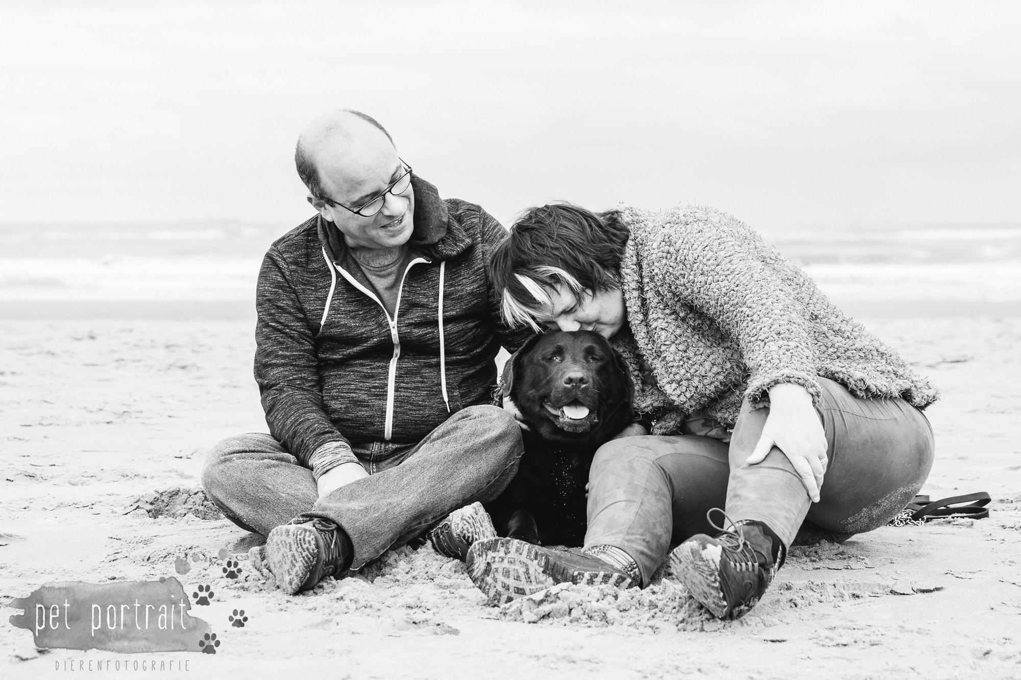hondenfotograaf-wassenaar-labrador-bikkel-2