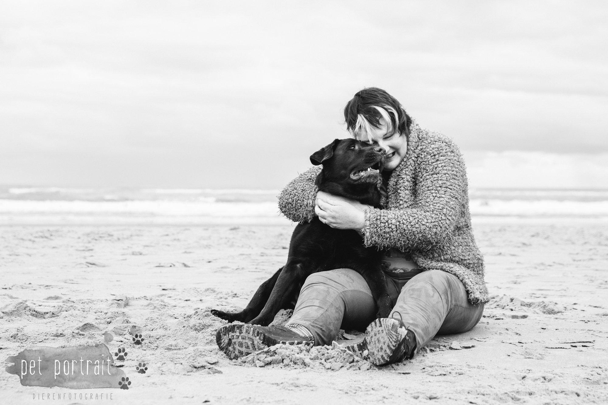 hondenfotograaf-wassenaar-labrador-bikkel-3