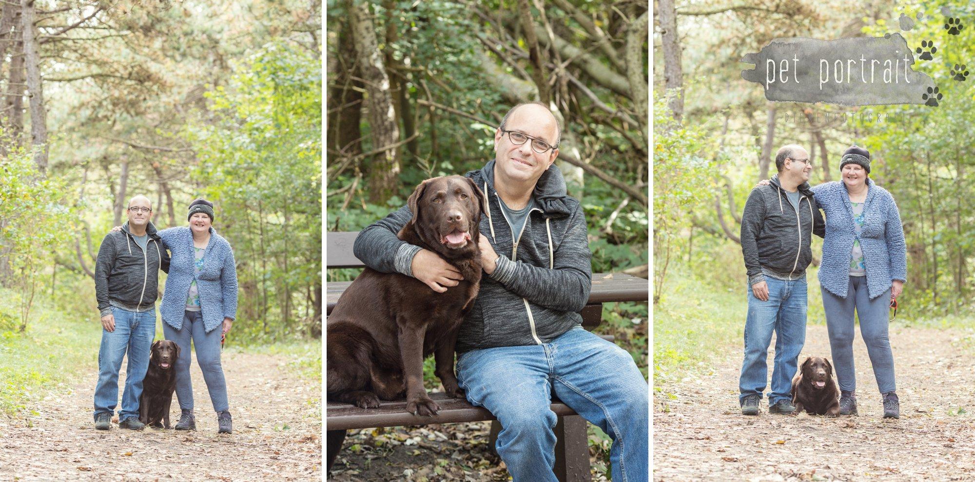 hondenfotograaf-wassenaar-labrador-bikkel-6