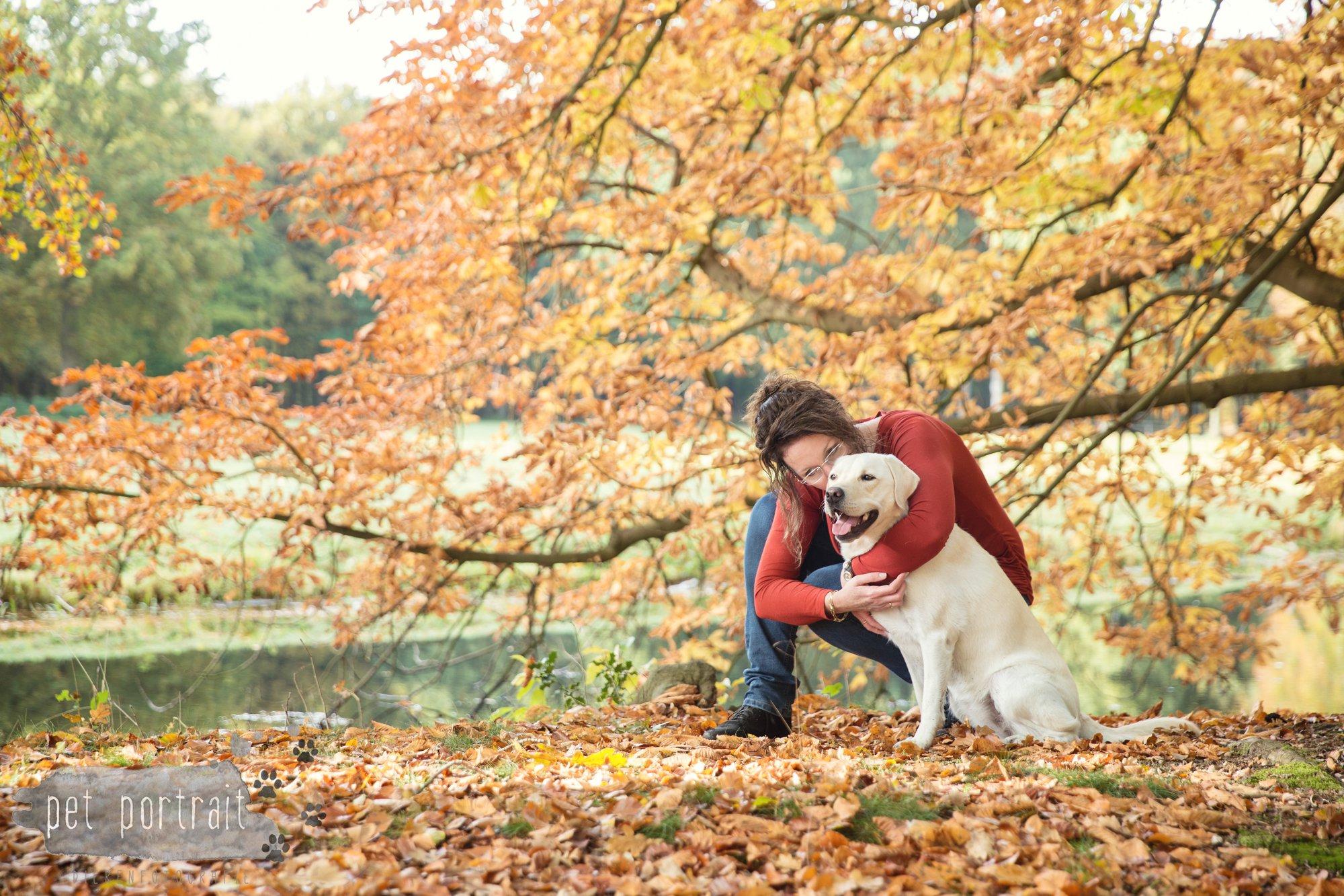 hondenfotograaf-s-graveland-beloved-dier-en-baasje-fotoshoot-labrador-juul-8