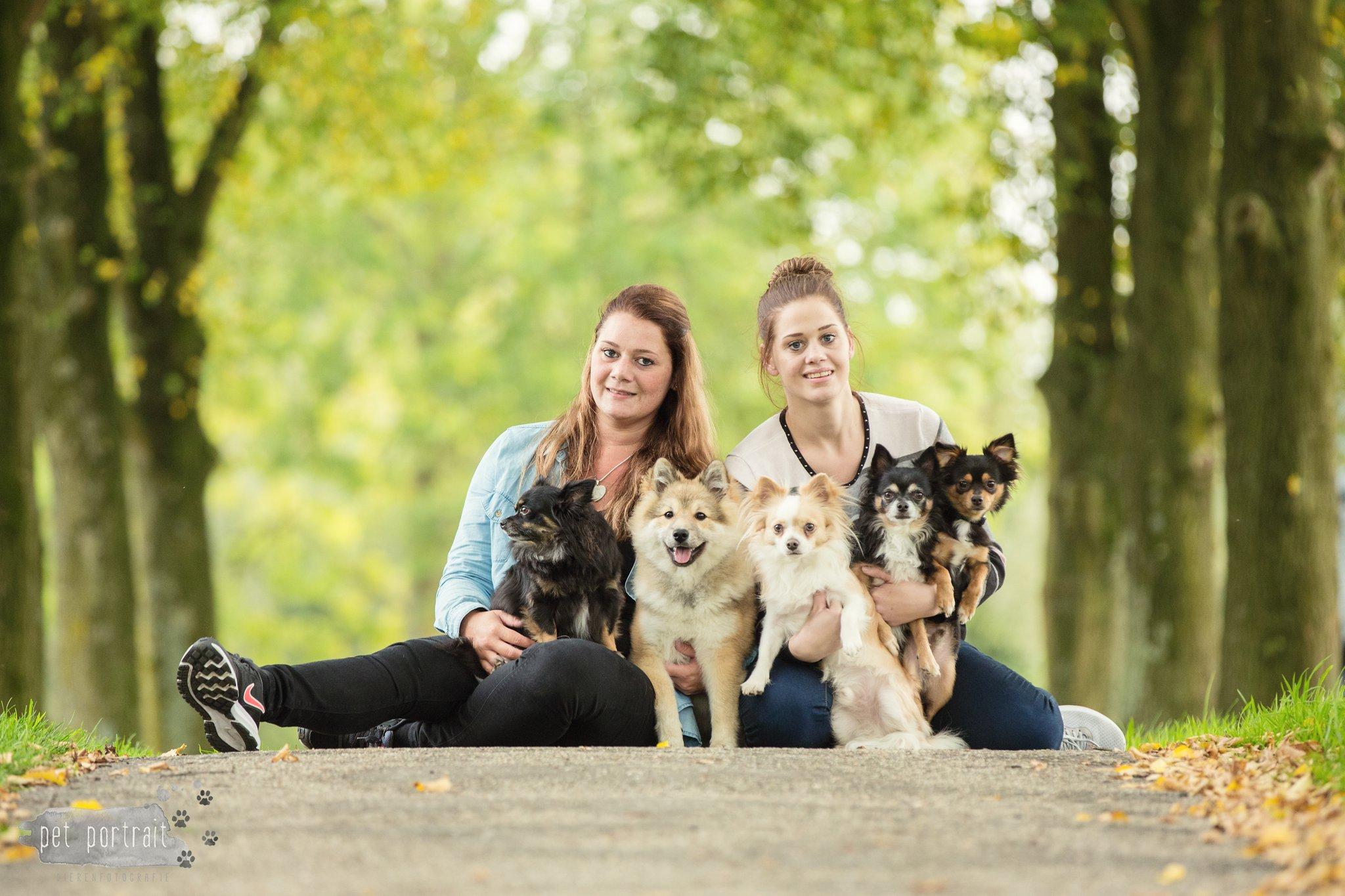 Hondenfotograaf Zoetermeer - Dier en Baasje fotoshoot in het park