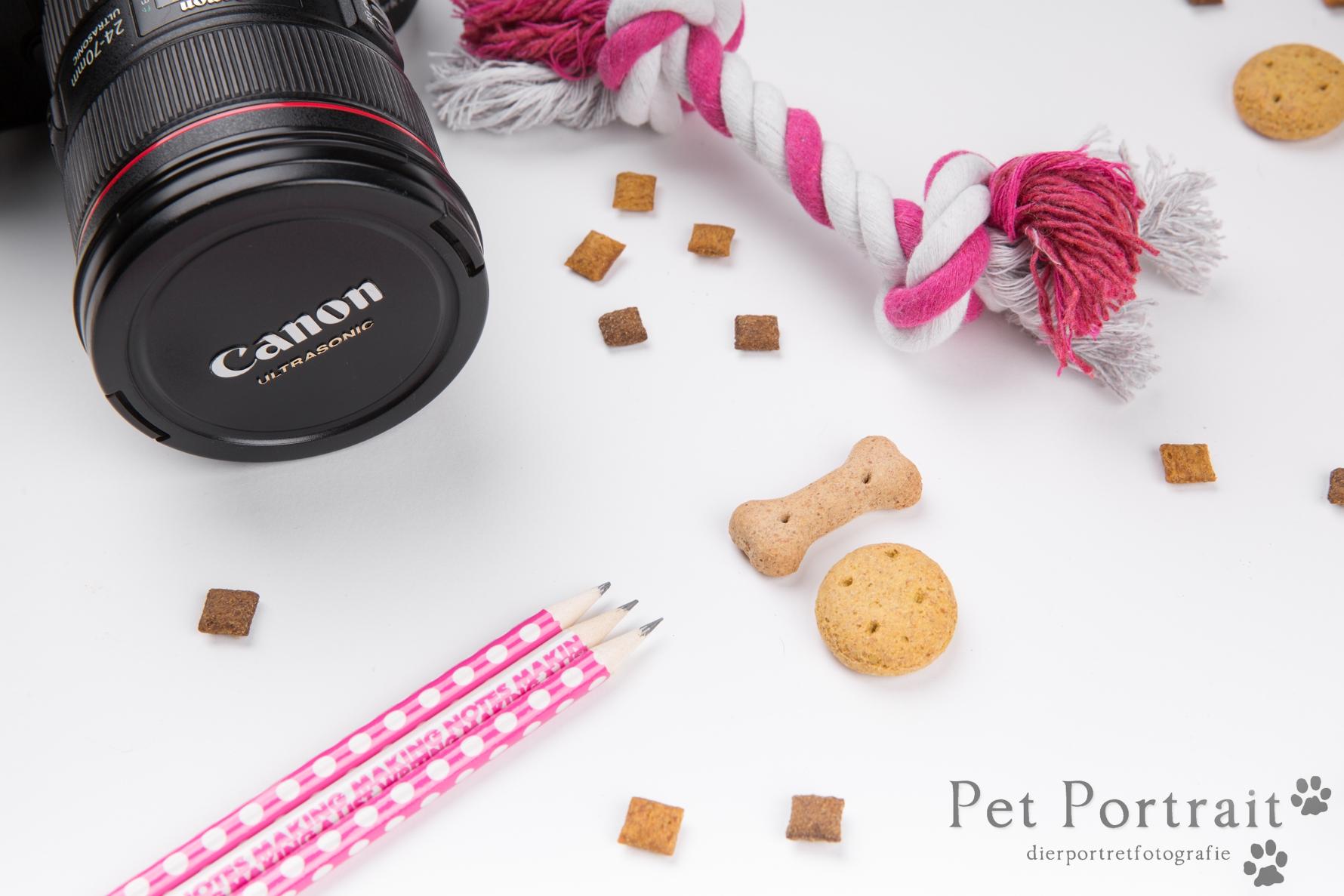 Dierenfotografie workshops en cursussen - basisworkshop dierenfotografie