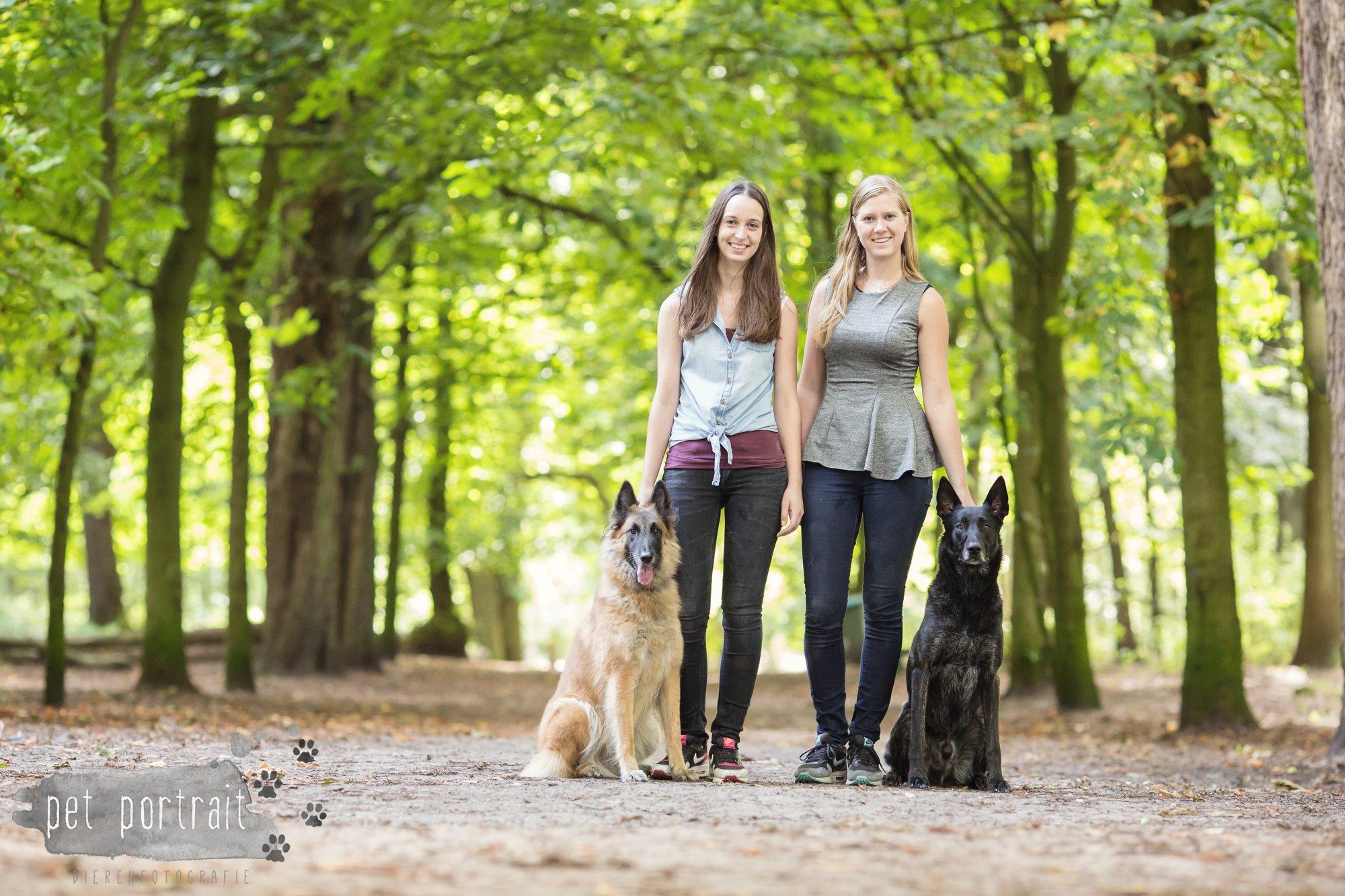 Hondenfotograaf Heemstede - Hollandse Herder en Tervuerense Herder
